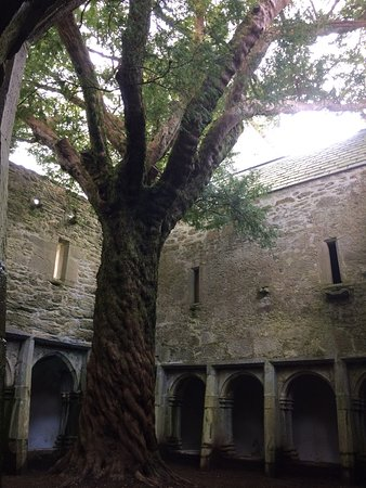 Gleneagle Hotel: The Abbey in Killarney National Park,take a walk and view the Abbey it's free of charge !!