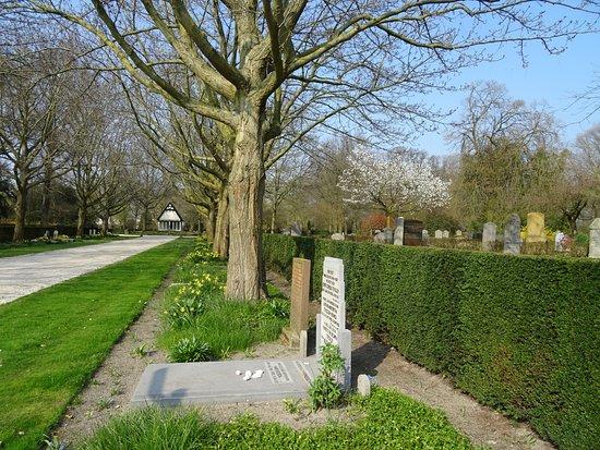 Algemene Begraafplaats Kleverlaan