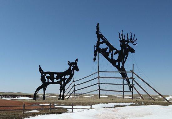 """Regent, ND: """"Deer Crossing"""""""
