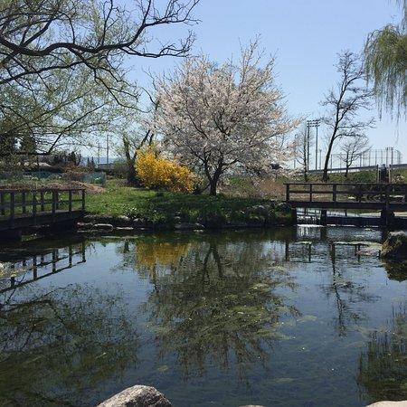 Azumino Wasabida Springs Park