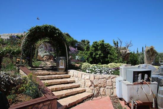 Ramot Naftali, Israel: 3 Vines Winery grounds