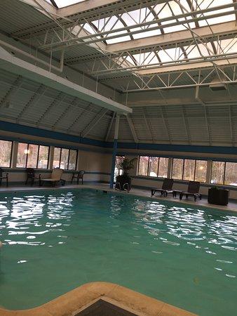 The English Inn of Charlottesville: Nice indoor pool