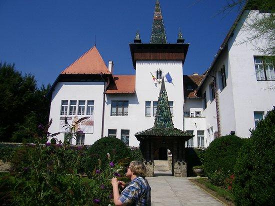 Sfantu Gheorghe, Romania: The museum main building