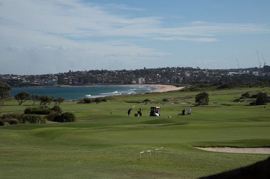 Collaroy Beach, Australia: lovely greens
