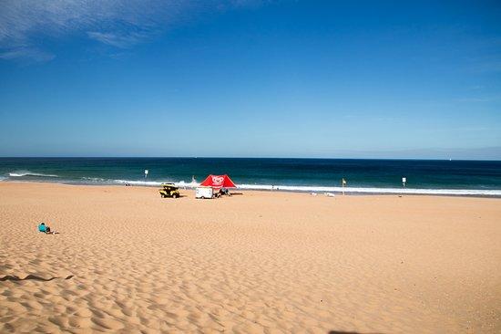Whale Beach, Australia: nice clean beach