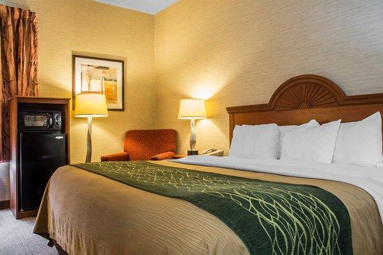 Mansfield, Pennsylvanie : Guest room