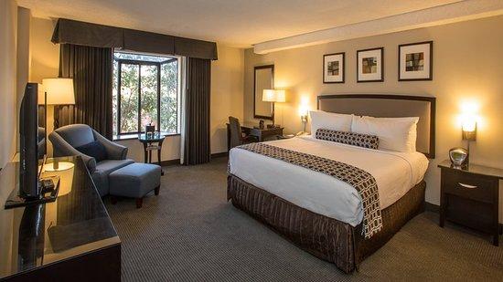 Concord, Californien: Guest room