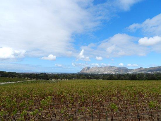Constantia, جنوب أفريقيا: Vista sensacional