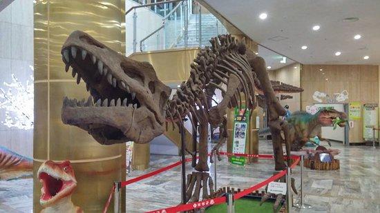 Boseong-gun, Sydkorea: 공룡공원 실내...