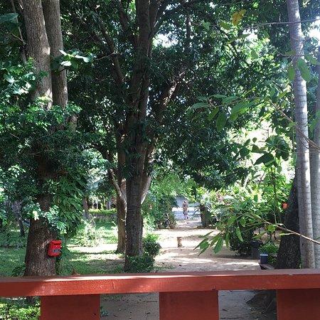 The Cottage Samui : The Cottage@Samui