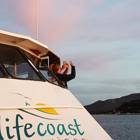 Cowes, Australia: You know it's an awesome sunset when the Captain & crew start taking pics