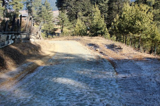 Phobjikha Valley, Bután: path leading to the guesthouse covered with snowflakes