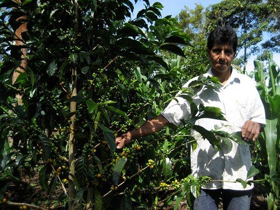 Constantia, Sydafrika: Carlos on his coffee farm