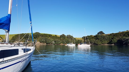 Opua, Selandia Baru: Couple of the fleet at anchor