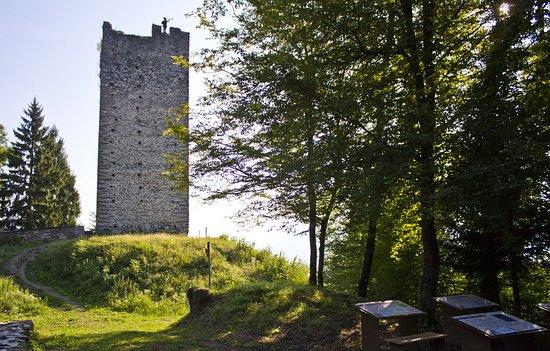Site des Tours de Montmayeur