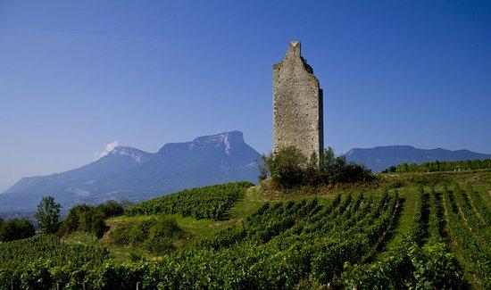 Chignin, Γαλλία: getlstd_property_photo
