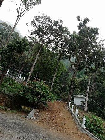 Seven Springs Plantation Resort (Munnar, Kerala) - Hotel ...