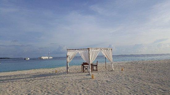 فابينفارو: بانيان تري جزر المالديف