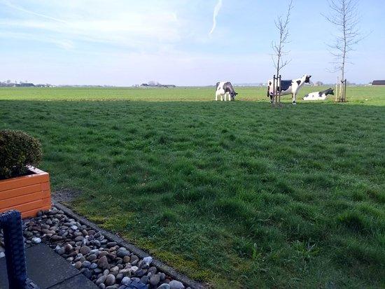 Aduard, The Netherlands: IMG_20180416_084745850_HDR_large.jpg