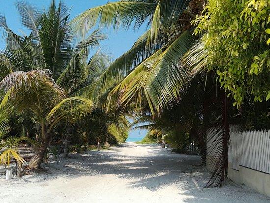 Haa Alif Atoll: L'accesso al mare dal viottolo adiacente all'area comune