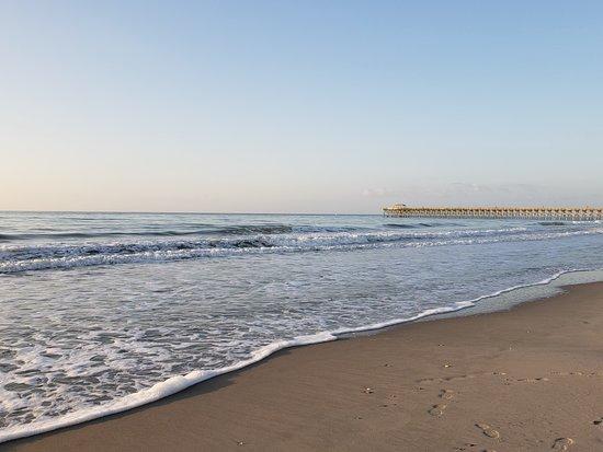 The shoreline (313010686)