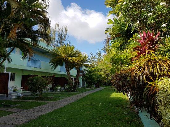 The Palm Garden Hotel: Areas