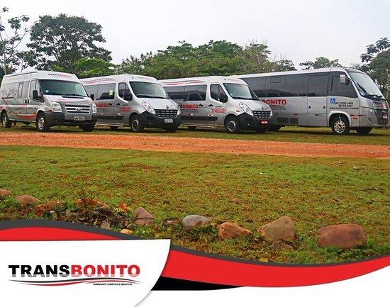 Transbonito Transporte