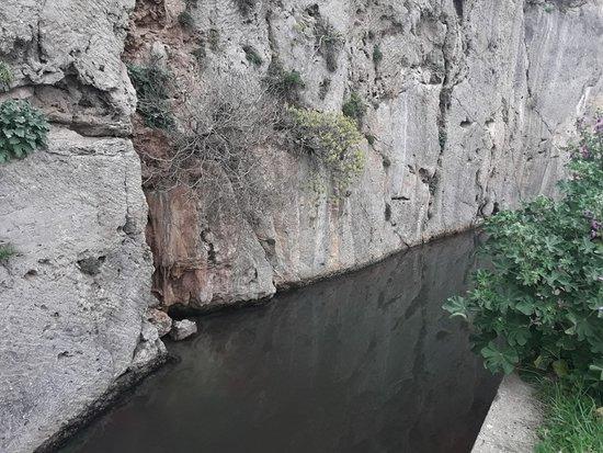 Ansedonia, Италия: La tagliata