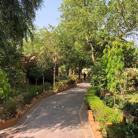 Ethnic Village Resort, a taste of Jaipur tradition