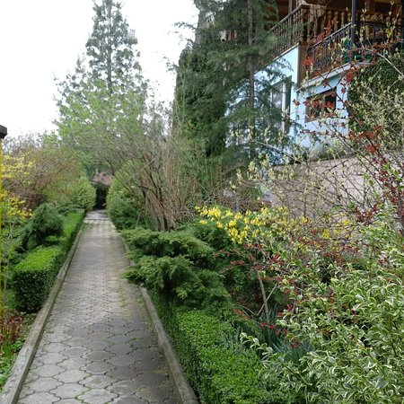 Boutique Hotel Casanova Inn: Garden