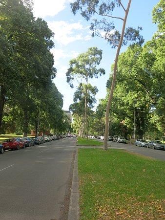 Fitzroy Gardens: Landscaped Gardens