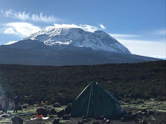 Arusha, Tanzania: At the foot of the Kilimanjaro