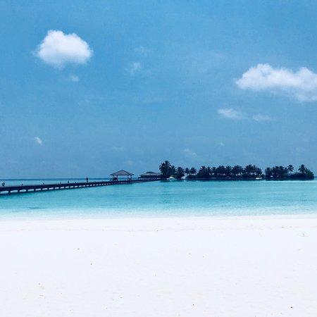 Best Resort Ever!