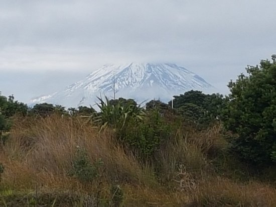 New Plymouth, Nueva Zelanda: 20180415_103428_large.jpg