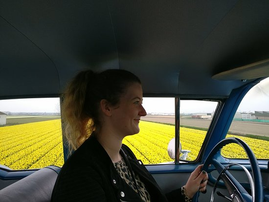 Josie Tours: Hi, I'm Josie! Will you come with me and tour along the beautiful flower fields?