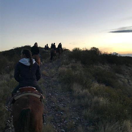 Los Pingos Horse Riding : photo3.jpg