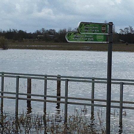 Athlone, Ireland: photo1.jpg