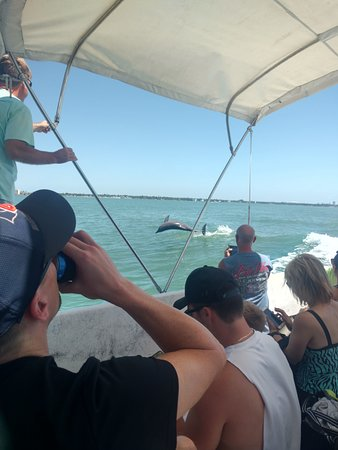 Egmont Key Boat Tour: They said you will almost always see dolphins on the boat ride.