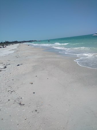 Egmont Key Boat Tour: The beach on the opposite side from where you land the boat is gorgeous. Not a long walk. Wear s
