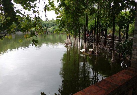 Dongguan Park ภาพถ่าย