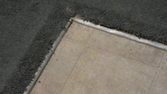 Fußbodenbelag ~ Der fußbodenbelag erzählt von längst vergangenen speisen picture