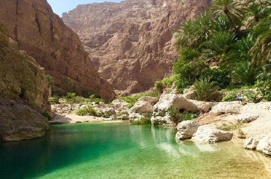Wadi Shab full day tour (Muscat...