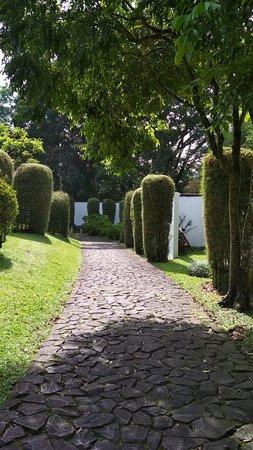 Taman Bunga Nusantara: lorong di taman ala Jepang