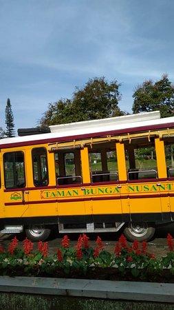 Taman Bunga Nusantara: dotto train