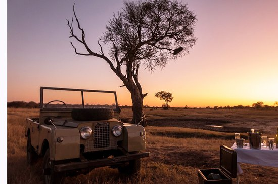 Hwange National Park, Zimbabwe: Vintage game drive