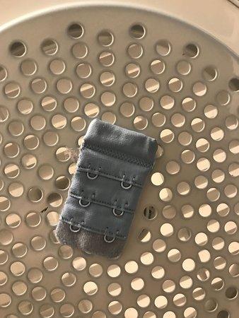 Q1 Resort and Spa : old bra clip left on dryer
