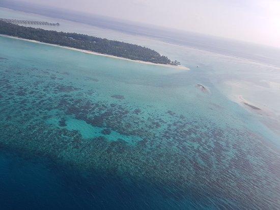 Diveoceanus Holiday Island Resort & Spa: 20180111_162129_large.jpg