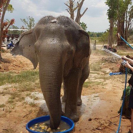 Tha Yang, Thailand: photo0.jpg