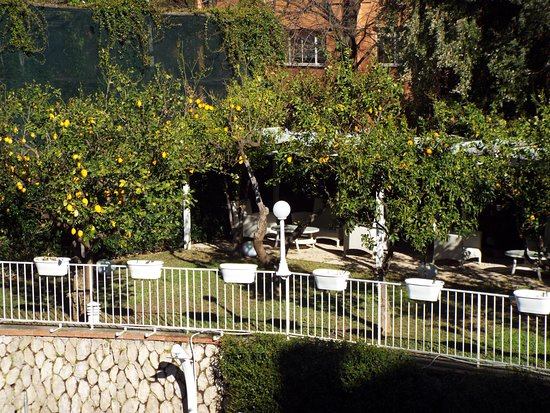 Hotel Capri: View of Garden from Room Balcony