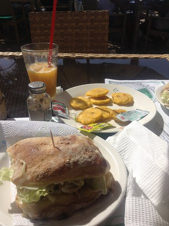 Mojito Bar: Natalie Con Tuna Sandwich, Frozen Passion Fruit drink. We ate most of the fried Plantains!